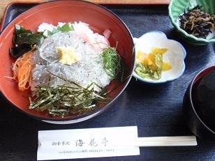 20121224_江ノ島 2_生しらす丼.JPG